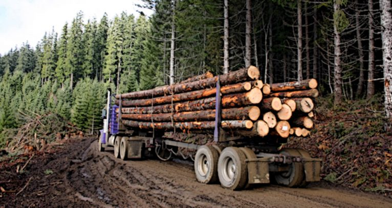 Sustaining logging, strengthening families, boosting rural Idaho